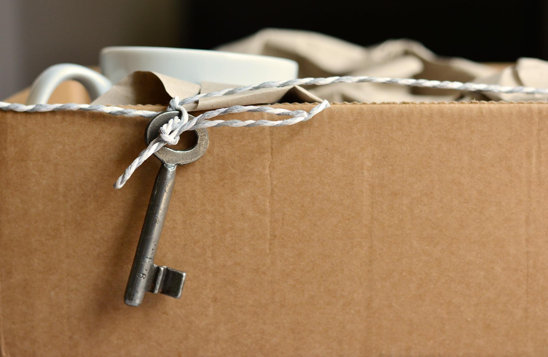 Ecco come organizzare al meglio un trasloco